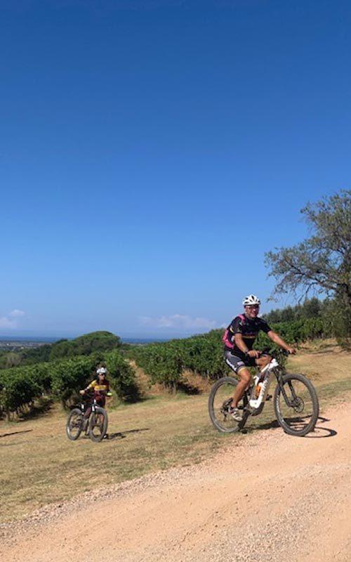 Wine & Bike Tour
